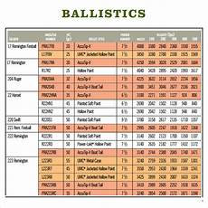 Nosler Bullet Coefficient Chart Free 3 Sample Ballistics Chart Templates In Pdf