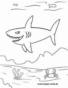 malvorlage kleine kinder hai kostenlose ausmalbilder