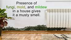 How To Get Rid Of Musty Smell In Furniture Easy To Do Solutions To Get Rid Of Musty Smell In House