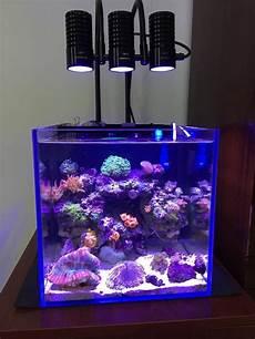 5 Gallon Tank Light Aliexpress Com Buy Led Light Marine Sea Tank Coral Sps