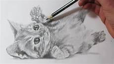 dibujos de gatos c 243 mo dibujar un gato realista ho to draw a cat