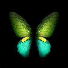 Fold Butterfly Download Samsung Galaxy Fold Wallpapers In Full Resolution