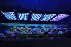 Best Aquarium Lights Atlantik V4 Reef Aquarium Led Lighting Orphek Aquarium