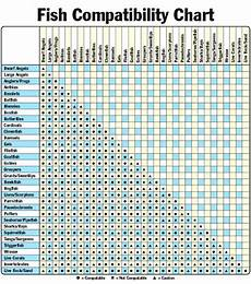 Bird Compatibility Chart Fish Compatibility Chart Pet Coupons