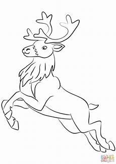 santa claus s reindeer coloring page free printable