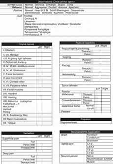 Neurological Exam History Neurologic Examination And Neuroanatomic