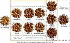 Almond Variety Chart California Almonds Gifs Find Amp Share On Giphy