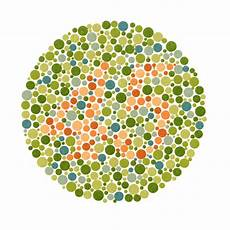 Colour Vision Test Chart Think You Re Color Blind Take This Quiz Science Of Us