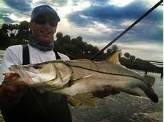 Snook Nook Tide Chart On Foot Angler From Henry Snook Nook Jensen Beach