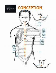 Spinal Pressure Points Chart Pressure Point Chart Get Your Free Copy Now