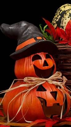 pumpkin iphone wallpaper pumpkin screensavers and wallpaper 60 images