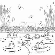 malvorlage mit teich einwohner und pflanzen