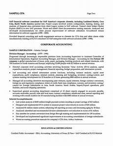 Accountant Resume Summary Accounting Professional Resume