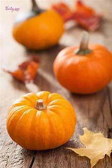 pumpkin iphone wallpaper autumn pumpkin iphone wallpapers top free autumn pumpkin