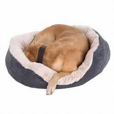 rosewood grey jumbo pet bed free p p 163 29