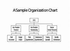 Organizational Chart Sample Format Sample Blank Organizational Chart 16 Documents In Pdf