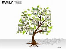 Family Tree Presentation Family Tree Powerpoint Presentation Templates