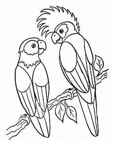 Vogel Malvorlagen Vogel Malvorlagen Malvorlagen1001 De