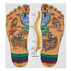 Spinal Pressure Points Chart Acupressure Points Pressure Chart For The Feet Zazzle Com