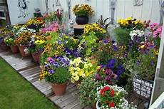 Garden Design Pictures 10 Pretty Container Gardens That Are For Any Home