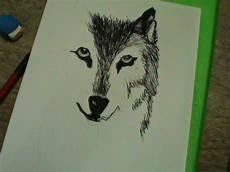 desenho de lobos desenhos das meninas mori como desenhar um lobo de frente