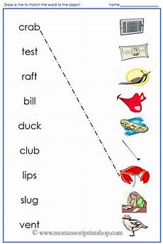 Blue Phonetic Words And Pictures Printable Montessori
