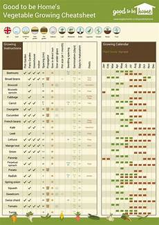 Vegetable Growing Guides Your Personalised Vegetable Growing Cheat Sheet