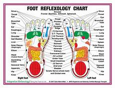 Buy 8 5 Quot X 11 Quot Foot And Hand Charts Set