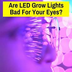 Do Led Lights Need Earthing Are Led Grow Lights Bad For Your Eyes What You Need To