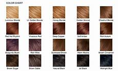Smartstyle Hair Color Chart How To Care For Your Hair Color Women Hairstyles