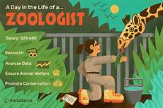 What Do Wildlife Biologists Do Zoologist Job Description Salary Skills Amp More