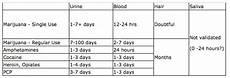 Marijuana Detection Chart Mr Stinky S Green Garden Drug Test Detection Times For