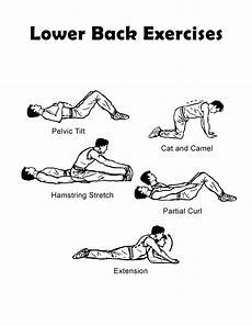 Lower Back Stretches Chart Lower Back Exercise Chart