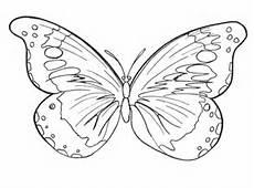 Malvorlage Schmetterling Erwachsene Malvorlage Schmetterling Kostenlos