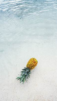 pineapple iphone wallpaper 5 cool pineapple backgrounds for iphones pineapple