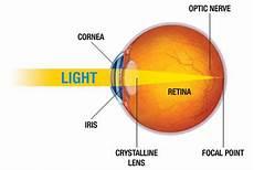How Light Enters The Eye How The Eye Works Nkcf Org