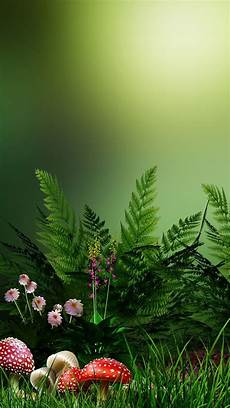 phone flower wallpaper apps hd desktop wallpapers for your desktop pcs