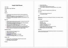 Professional Resume Model Professional Portfolio Examples For Models Comment On