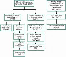Rural Hospital Organizational Chart 2 Health Service Delivery Organizational Structure In