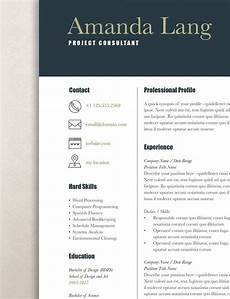 Professional Resume Templates For Word Modern Resume Template Professional Resume Template Word