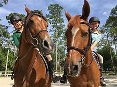 Casperey Stables Local Friends Set To Contend For National Titles At Horse