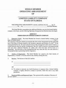 Example Llc Operating Agreement Operating Agreement Fill Online Printable Fillable