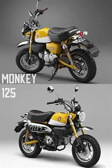 2019 Honda 125 Monkey by 2019 Honda Monkey 125 Std Scrambler Cafe Revealed