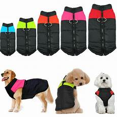small coats for waterproof small large pet clothes winter warm padded
