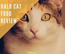 Cat Food Reviews Halo Cat Food Reviews What You Need To Know