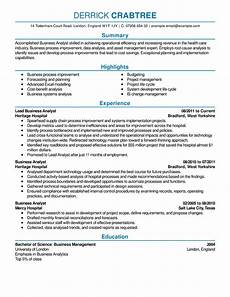 Successful Resumes 8 Professional Senior Manager Amp Executive Resume Samples