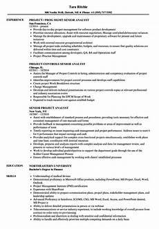 Project Analyst Resume Sample Senior Project Analyst Resume Samples Velvet Jobs
