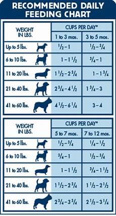 Blue Buffalo Feeding Chart Small Breed Blue Puppy Chkn Rice 30 Lb