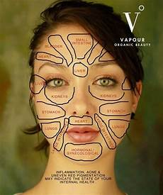 Chinese Acne Face Chart Chinese Face Map How Organs Link To Your Face