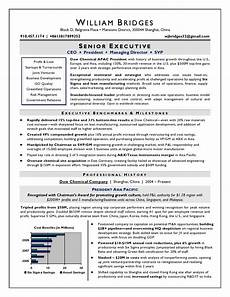 Ceo Resume Sample Doc Ceo Sample Resume Award Winning Resume Writer Serving